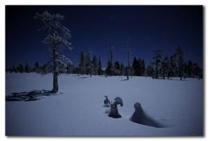 vinternatt 1