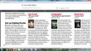Dagens Nyheter om Min grav är din